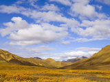 Clouds Above Colorful Fall Tundra with Willows and Dwarf Birch Bushes