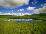 Cumulus Clouds Hover Above a Glacial Kettle Pond