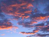 Cumulus Clouds Colored by Sunrise in Morning Sky