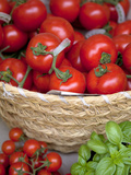Sicily  Italy  Western Europe  Tomatoes and Basil  Staple Items in the Southern Italian Kitchen