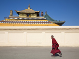 Mongolia  Ulaanbaatar  Monk at Gandan (Gandantegchenling) Monastery