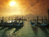 Venice  Veneto  Italy  Gondolas Tied at the Bacino Di San Marco
