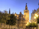 Spain  Andalucia  Sevilla  Cathedral and Giralda Tower