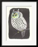 Lummon Owl