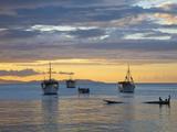 Venezuela  Nueva Esparta  Isla De Margarita - Margarita Island  Juangriego  Sunset over Juangreigo