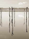 Suspended in the Air  Reflected in Water Remains of the Old Jetty on the
