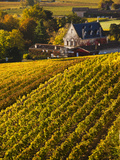 France  Aquitaine Region  Gironde Department  St-Emilion  Wine Town  Unesco-Listed Vineyards