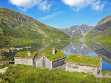 Norway  Western Fjords  Sogn Og Fjordane  Sheep Infront of Traditional Cottages by Lake