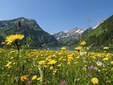 Lake Vilsalpsee  Tannheim Valley  Austria