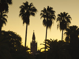 Spain  Andalucia Region  Seville Province  Seville  Giralda Tower from the Rio Guadalquivir River