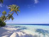 Maldives  Faafu Atoll  Filitheyo Island