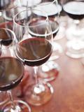 Spain  La Rioja Area  Alava Province  Elciego  Bodega Marques De Riscal Winery  Wine Tasting