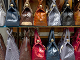 Italy  Florence  Tuscany  Western Europe  Leather Goods on Display