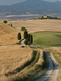 Winding Road  Val D' Orcia  Tuscany  Italy