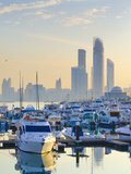 United Arab Emirates  Abu Dhabi  City Skyline from Abu Dhabi International Marine Sports Club