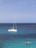 Spain  Balearic Islands  Ibiza  Cala Codolar Beach