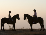 Malawi  Zomba Plateau  a Horse Riding Safari Is a Popular Way to Explore Zomba Plateau  (MR)