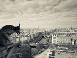 France  Paris  View from the Cathedrale Notre Dame Cathedral with Gargoyles