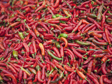 Red Chillies for Sale at Paro Open-Air Market  Red and Green Chillies are Very Important Ingredient