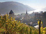 View on Bacharach with Peters Church and River Rhine  Rhineland-Palatinate  Germany