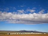 Mongolia  Bayangobi  Ger Camp