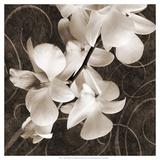 Orchid & Swirls I