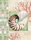 Mosaic Shell Collage I