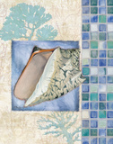 Mosaic Shell Collage III