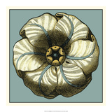 Floral Medallion IV