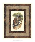 Rustic Raccoon