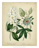 Cottage Florals II