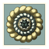 Floral Medallion III