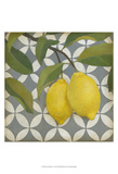 Fruit and Pattern I