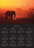 Elephant Herd Silhouetted Against Orange Sky