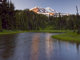 Mt Adams Wilderness Area with a Coniferous Forest and a Tarn  Washington  USA