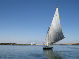 Felucca on the Nile River  Egypt