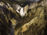 Lower Yellowstone Falls  Grand Canyon of the Yellowstone River  Yellowstone National Park  Wyoming