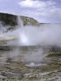 Cliff Geyser in Black Sand Basin  Yellowstone National Park  Wyoming  USA