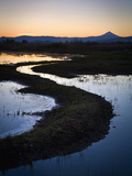 A Portion of the Denman Wildlife Area  Oregon  USA