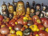 Tomato Variety from Russia with Russian Dolls