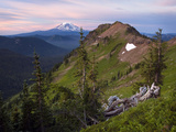 Goat Rocks Wilderness with a View of Mt Adams from Goat Ridge  Washington  USA