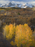 The Sneffels Range in the San Juan Mountains as Seen from the Dallas Divide in the Fall  Colorado