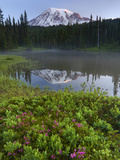 Mt Rainier National Park  Reflection Lake  Mt Rainier  Washington  USA