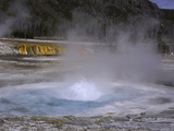 Hot Spring in Black Sand Basin  Yellowstone National Park  Wyoming  USA