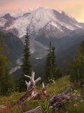 Mount Rainier at Sunset  Mount Rainier National Park  Washington  USA