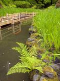 Zig Zag Bridge and Iris  Japanese Garden  Portland  Oregon  USA