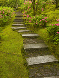 Azaleas and Stairs in the Natural Garden  Japanese Garden  Portland  Oregon  USA