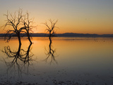 Salton Sea Sunset  Southern California  USA