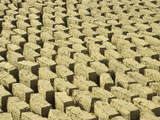 Mud Bricks Drying in the Sun  Mali