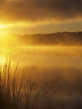 Dawn over a Misty Lake